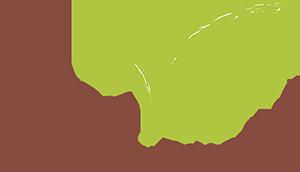 sinnvoll – Zentrum für Gesundheit Logo